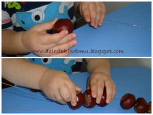 ساخت حیوانات مختلف با میوه 05