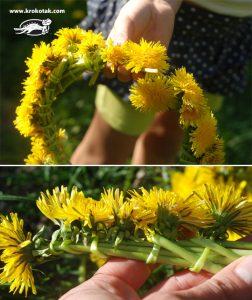 ساخت تاج گل با گل های بهاری