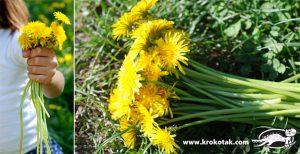آموزش ساخت تاج گل با گل های بهاری